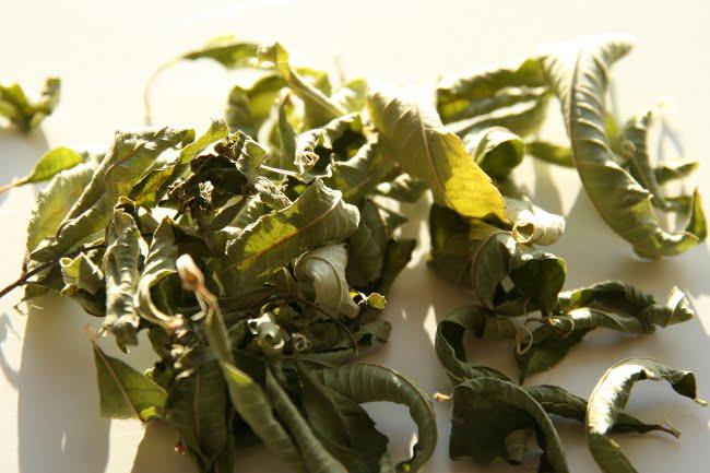 Verveine citronnelle - feuilles séchées