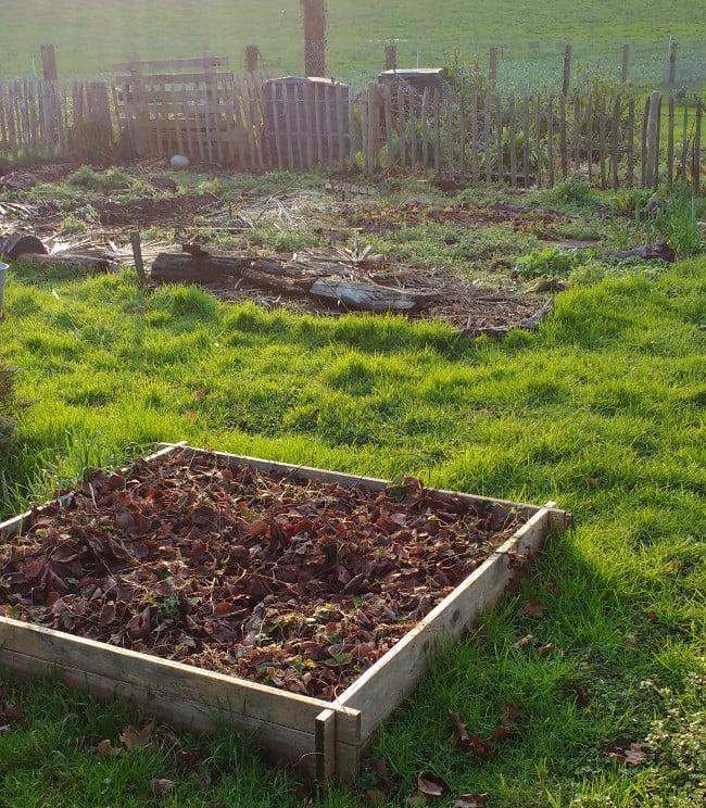le jardin en janvier
